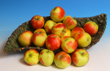 Äpfel Elstar 220