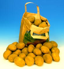 Kartoffeln Belana 220