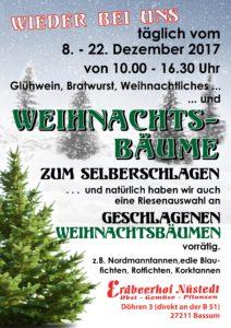Plakat Weihnachtsbaumverkauf 2017