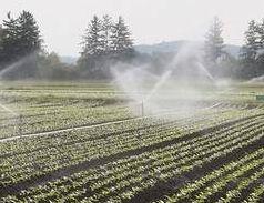 Feld bewässern